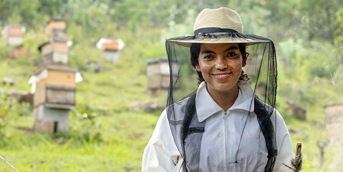 Urluntan menestyvät mehiläistenhoitajat