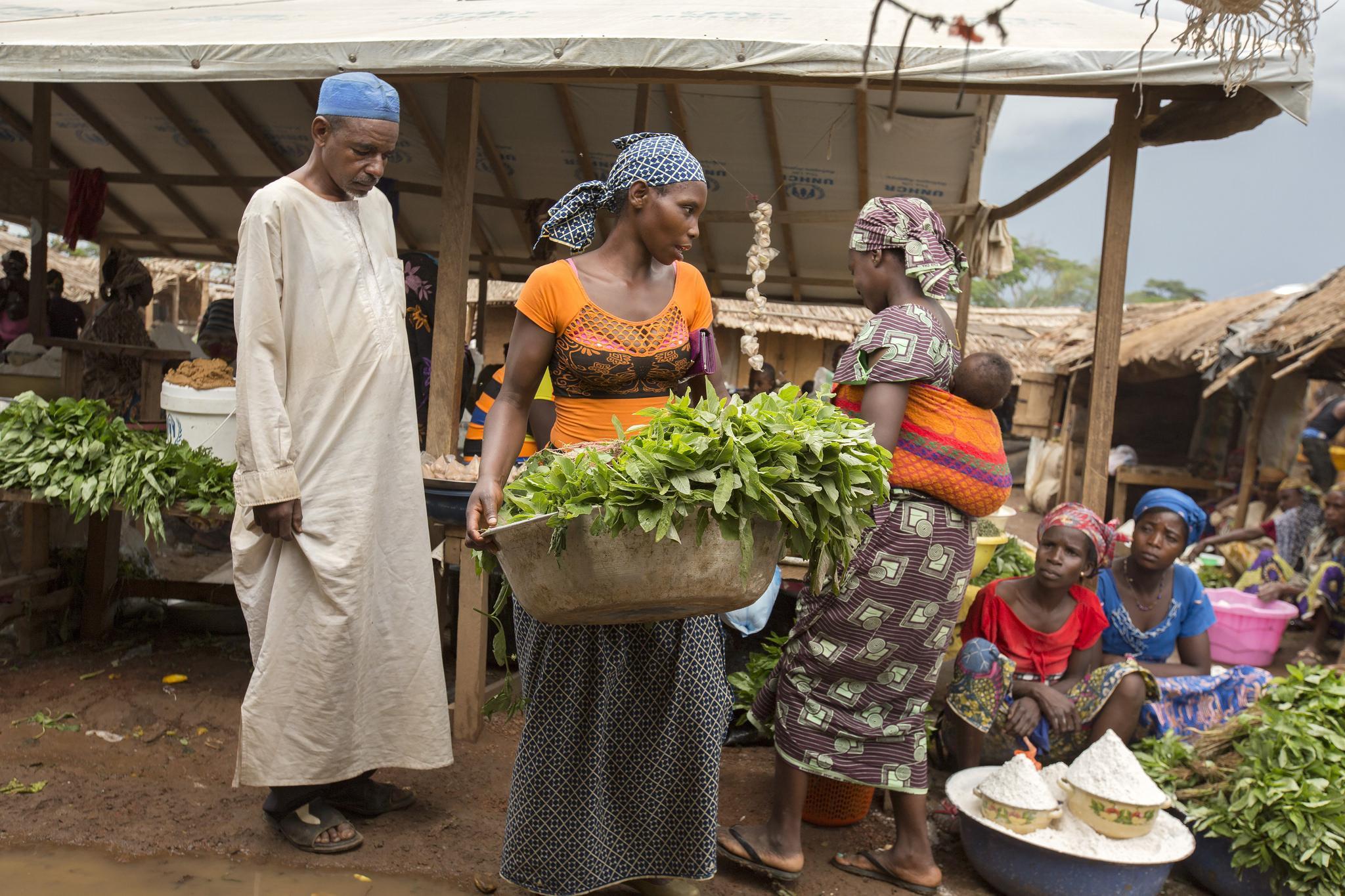 Kamerun - tori