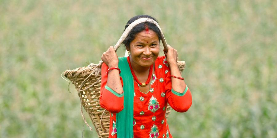 Kuvassa nepalilainen pienviljelijänainen, Chandra Kala Tapa, punaisessa mekossa.